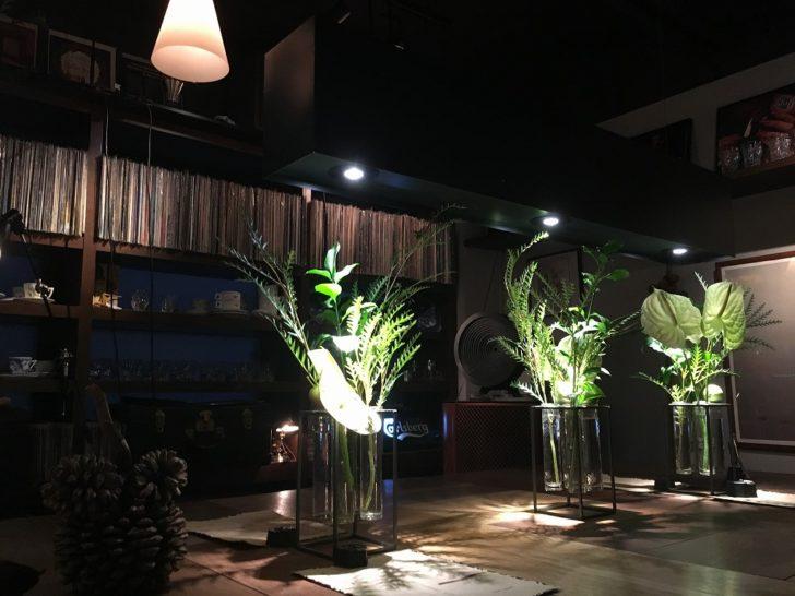 ローチロースター 札幌カフェ 夜カフェ