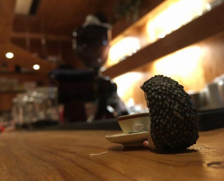 ハリネズミ珈琲店 札幌カフェ 間借り ミノタケ minotake